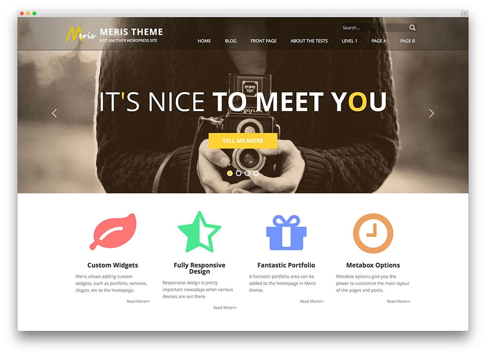 meris-flat-wordpress-theme